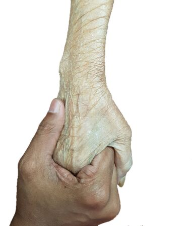 Hand of an elderly holding the hand of a young, elderly support concept in white background Banco de Imagens