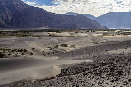 arid dry dessert sand dunes of nubra valley with himalayan barren mountain range in the background at ladakh, Kashmir, india