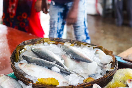 raw fishes kept on crushed ice at fish market kept on display Фото со стока