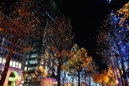 Night illumination event of Midosuji