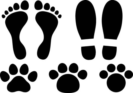 Footprint image material collection