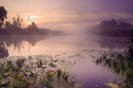 Landscape of morning sunrise with lake and forest.  photo