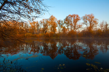 View on autumn landscape of river and trees in sunny day. photo