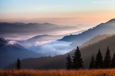 霧と雲山の渓谷の風景、ウクライナ 写真素材