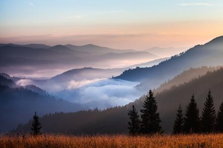 Mist en cloud mountain valley landschap, Oekraïne Stockfoto - 32313017