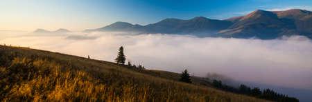 smokies: Majestic sunset in the mountains landscape.Carpathian Ukraine.