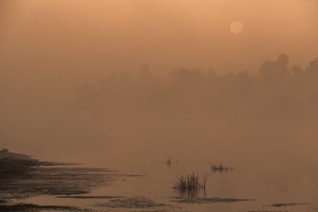 astray: Moon reflected in a lake on a moor on a misty morning