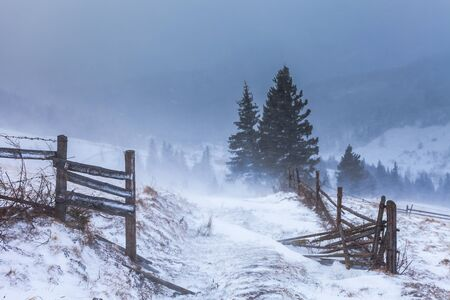 snow storm: Clearing Snow Storm in the Rocky Mountains. Stock Photo