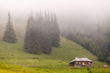 Amazing mountain landscape with fog. The carpathian Stock Photo
