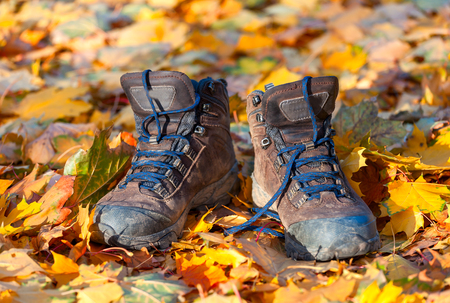 muddy clothes: Hiking boots, well worn and muddy on the forest floor.