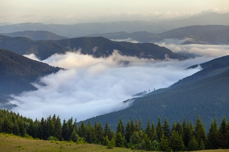 mistery: scenic view of mountain forests covering by fog. Stock Photo