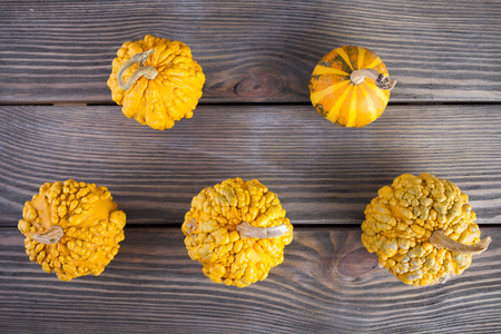 Pumpkins on wooden background.