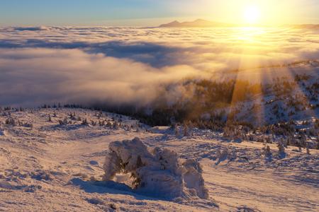 a wonderful world: winter Carpathians landscape, Europe mountains, wonderful world