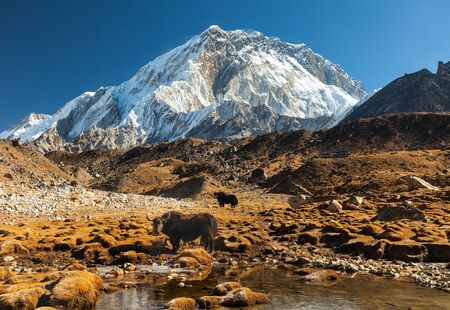 Nuptse, Everest region, Himalaya, Nepal Stock Photo