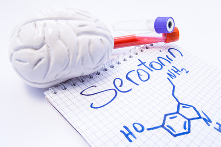 Notebook inscribed with Serotonin and chemical formula surrounded by brain shape and lab test tubes with blood and cerebrospinal fluid. Visualization of serotonin function, effect of it level on mood