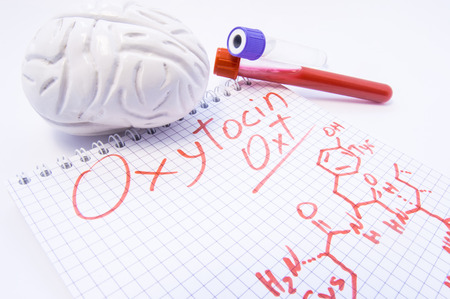 Note inscribed with hormone Oxytocin and chemical formula lies surrounded by 3d brain and lab test tubes with blood for analysis. Diagnosis levels of oxytocin, its use in medicine and effects on body