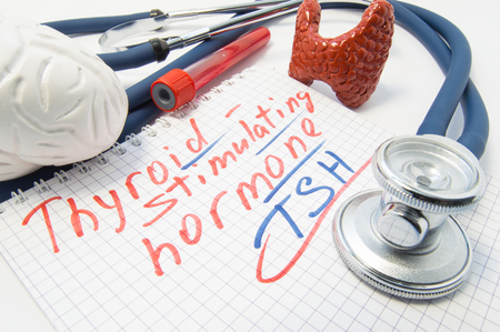 Notebook inscribed with thyroid stimulating hormone lies surrounded by stethoscope, brain thyroid, blood test tubes. Laboratory analysis of pituitary thyroid stimulating hormone on  high or low level