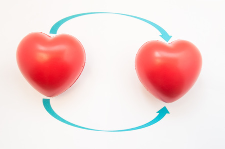 Concept photo of heart transplant. Two 3D anatomical heart shapes are reversed to direction of arrows. Illustration of heart transplantation in cardiac reconstructive surgery from donor to recipient Stock Photo