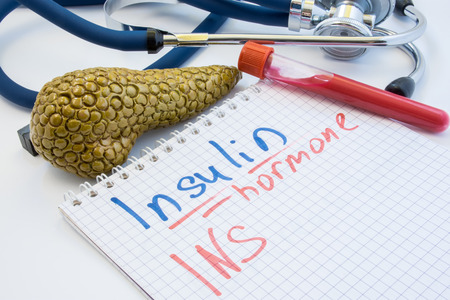 The hormone insulin concept photo. Notebook with the inscription of the Insulin Hormone  INS lies next to test tubes with blood, anatomical figure of the pancreas and a stethoscope in the background