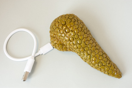 3D shape of pancreas with connected by charging cord, cable or for connecting with other devices. Concept of  technology bionic or artificial organ of pancreas for treatment diabetes or other diseases 스톡 콘텐츠