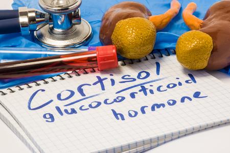 Cortisol-Glukokortikoidhormon-Diagnosekonzeptfoto. Standard-Bild