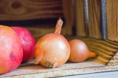 Onion bulbs are in wooden box for storage of products next to apples