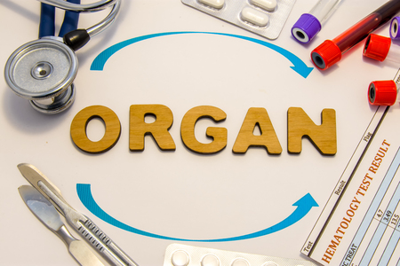 Organ transplantation concept photo. Word organ inlaid letters is surrounded by two arrows and medical supplies and equipment: stethoscope, surgical scalpels, test tubes with blood and medicines