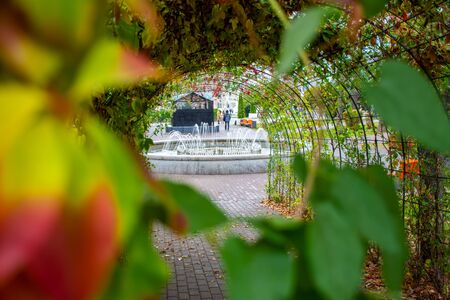 Iron Arch - tunnel entwined with ornamental grapes or ivy, ends with view of working fountain in the park in the background. In the foreground are the blurred leaves of the trees. Autumn landscape
