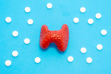Model or figure of thyroid gland, which corresponds to anatomical original, is located in blue background surrounded by white pills ornamented in polka dots. Photo for use in endocrinology, hormones 版權商用圖片