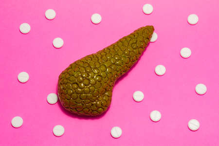 Anatomical realistic figure or model of human or animal pancreas gland on pink background, surrounded by white tablets or pills, which are arranged in polka-dot ornament. Photos for use in medicine