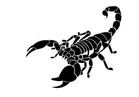 scorpio: Black scorpion  Illustration
