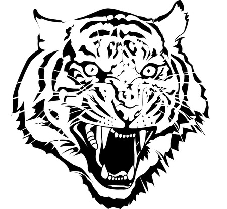 contours: Black and white tiger head vector by illuatraror I draw from my sketch pic