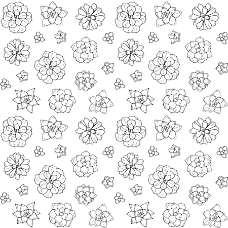 Hand drawn succulent plant. Vector illustration isolated on white background. Seamless pattern. Design for wrapping paper, fabric background Ilustração
