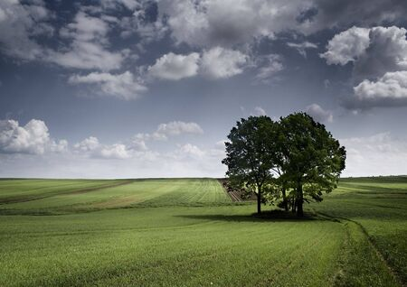 Landscape Stock Photo - 4526533