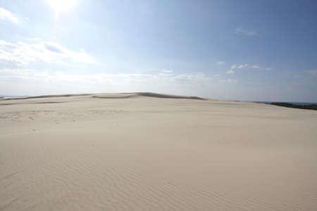 Sand dune photo