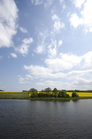 oilseed: Yellow oilseed rape and lake