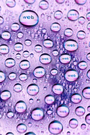 WEB in water drops Stock Photo - 9432196