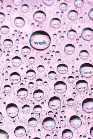 b w images: WEB in water drops