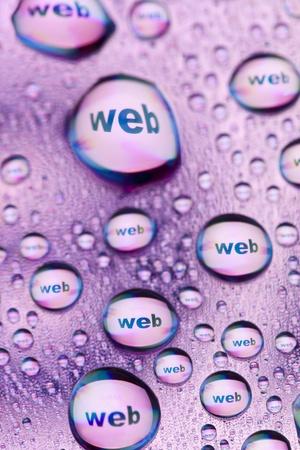 WEB in water drops