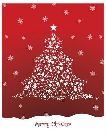albero pino: Natale stellato Pino