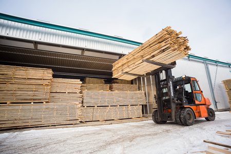 forestry: folk lift truck in wood factory or forestry timber depot