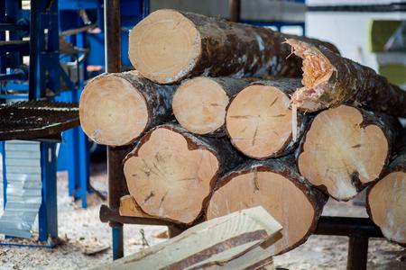 sawmill: Automatic sorting logs diameter at the sawmill