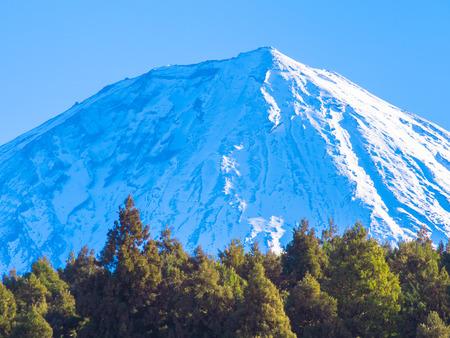 꼭대기가 눈으로 덮인: Woods and beautiful snowcapped Mount Fuji blue sky