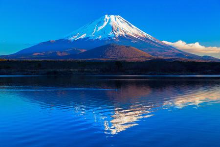 Mount Fuji and Lake Shoji II 免版税图像