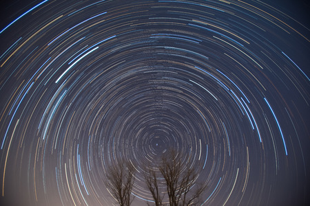 Polaris and star trails over the trees photo