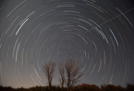 Polaris, star trails and shooting star over the trees  photo