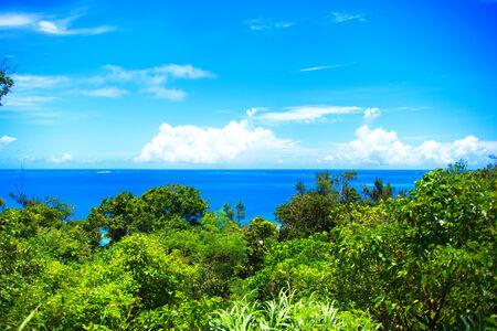 hallowed: World Heritage Sefa Utaki, spiritual space in Okinawa, japan