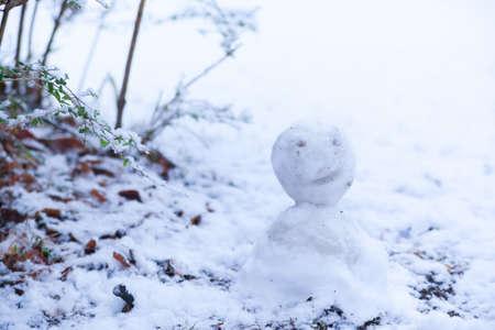 Snow, snow scene, snowman photo