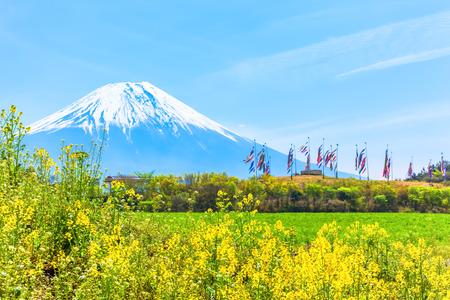 Mount Fuji met kleurrijke karpers spandoeken en canolabloem veld Stockfoto