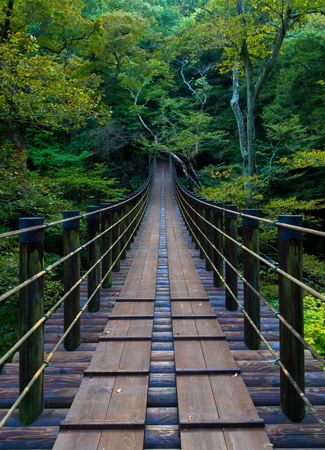 Shiomi Falls Suspension Bridge 免版税图像 - 33801671